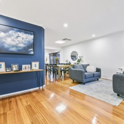 Feature blue wall in living room